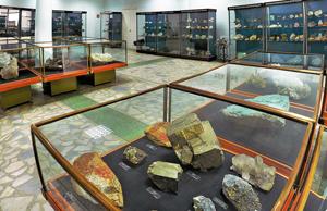 Посещение естественно-научного музея Ильменского государственного заповедника.